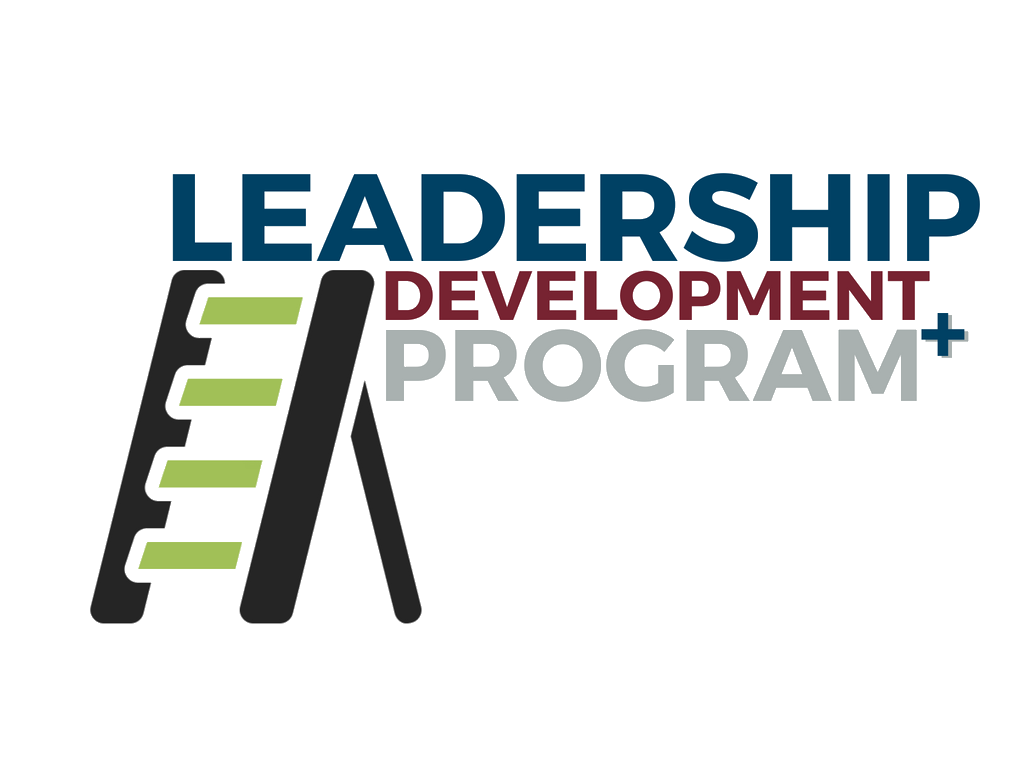 Leadership development program